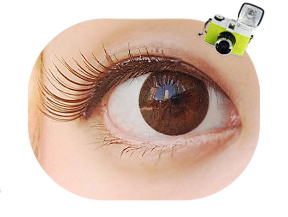 DUEBA FRENCH EXTRA BROWN CONTACT LENS
