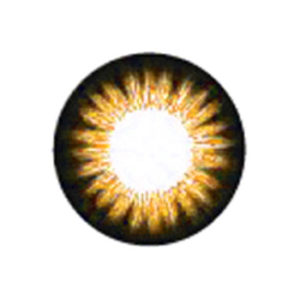 DUEBA CHAKRA BROWN CONTACT LENS
