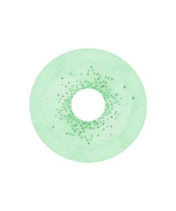 DUEBA SPATAX GREEN CONTACT LENS