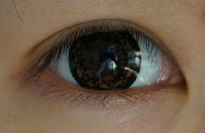 GEO PANSY BROWN WT-C64 BROWN CONTACT LENS
