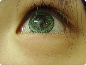 GEO NUDY GREEN CH-623 GREEN CONTACT LENS