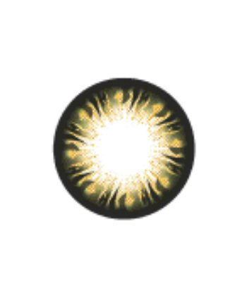 GEO BLANKET BROWN WFL-A74 BROWN CONTACT LENS