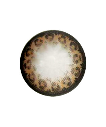 GEOLICA LEOPARD BROWN WFL-G24 BROWN CONTACT LENS