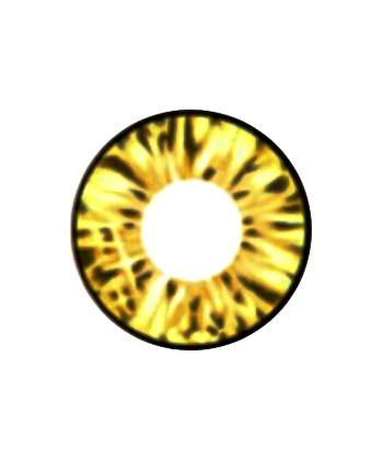 vassen cara gold contact lens solution lens.com