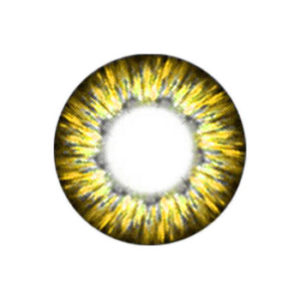 VASSEN CHEERFUL GOLD CONTACT LENS