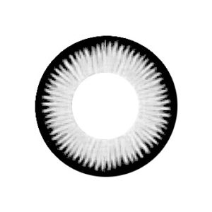 VASSEN CICI GRAY CONTACT LENS